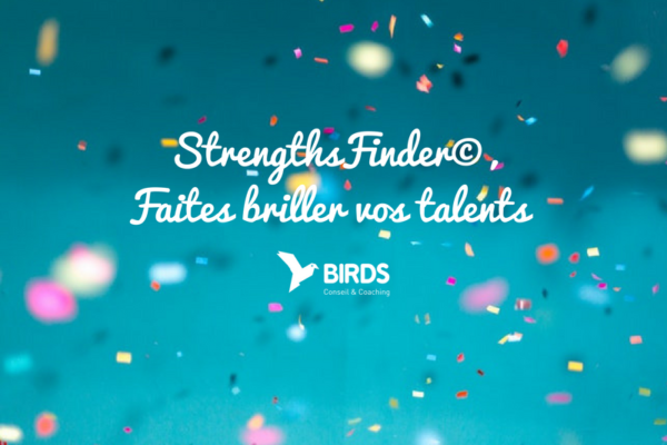 image-texte-strenghts-finder-faites-briller-vos-talents-article-blog