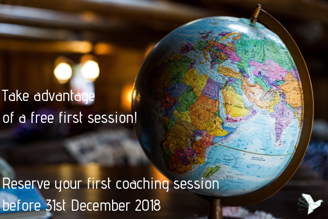 Interpersonal and Intercultural Efficiency Coaching