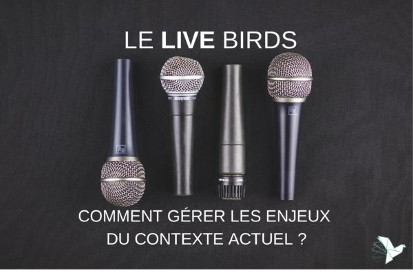 Miniature 2 le live birds